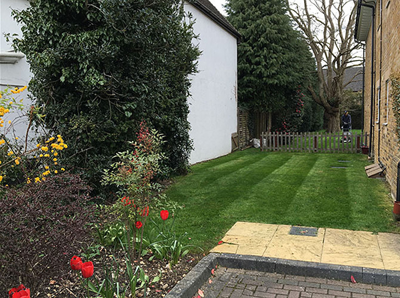 Allwinds provide professional grounds maintenance to multi acre sites such as apartment complexes and business premises.