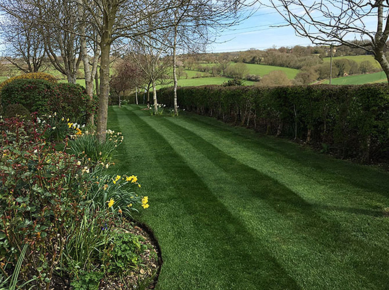Grass cutting and lawn mowing services for residential and commercial properties in buckinghamshire, bedfordshire and hertfordshire including pest control, hedge cutting, tree maintenance and wild flower planting