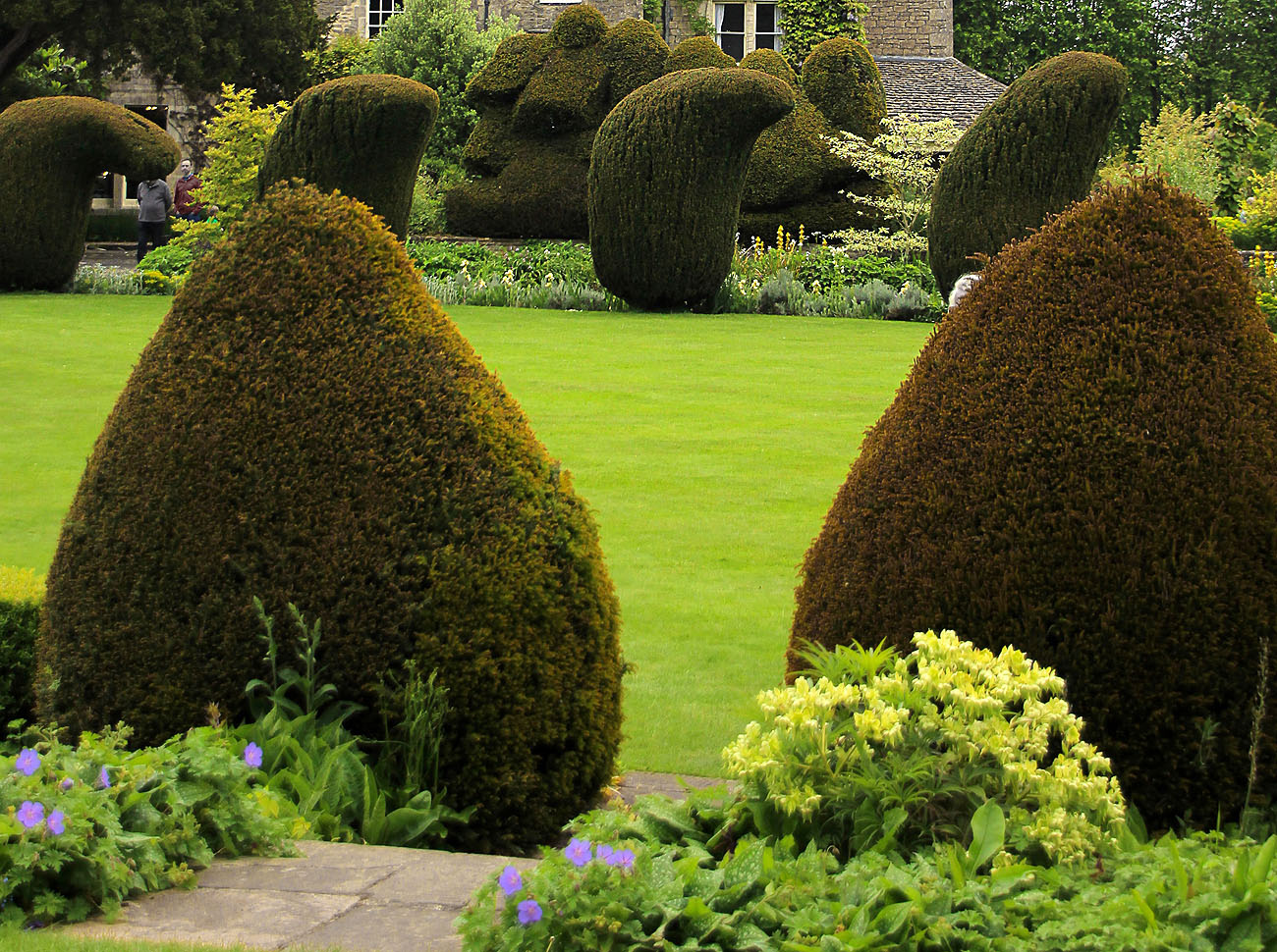 Allwinds Ground Maintenace, garden maintenace, garden landscape contractors, gardeners, landscape gardening uk
