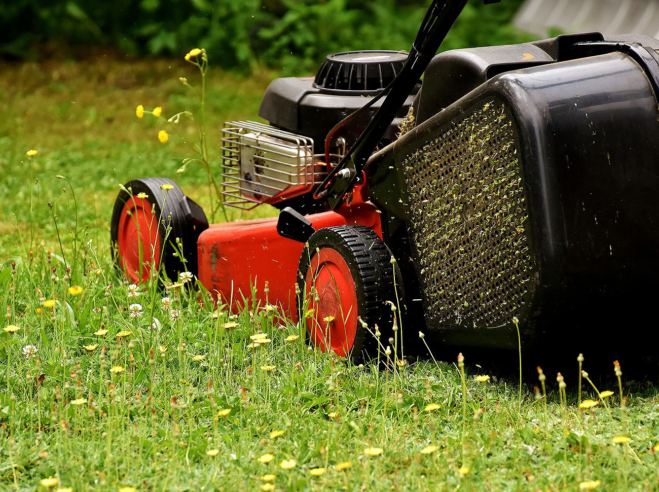 Allwinds Ground Maintenace provide fully professional services in garden maintenance, grounds maintenance, landscape gardening, lawncare, lawn cutting and tree care management throughout Hertfordshire and Buckinghamshire